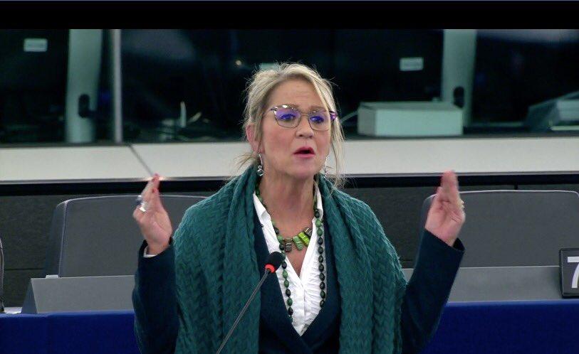 You are currently viewing Rodríguez-Piñero urgeix a la Comissió a analitzar l'impacte de les importacions de taronges de Sud-àfrica i a adoptar les mesures necessàries per a ajudar al camp valencià